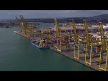 Embedded thumbnail for ZAL - Port